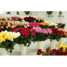 Автоматизация цветочного магазина